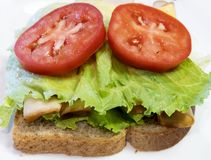Laitue, tomate, sandwich au poulet sur le blé entier photo stock
