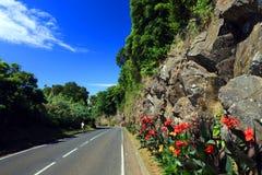 Lajes DAS Flores Fotografia de Stock