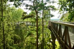 Laju塔卡、树机盖足迹复合体与走道,情报中心和观测塔,位于阿尼克什奇艾 图库摄影
