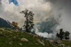 Laka i Himachal Pradesh royaltyfria bilder
