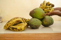 Lakatan香蕉和鳄梨 库存照片