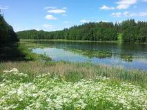 Lake Žalieji prūdeliai (Lithuania). Lake Žalieji prūdeliai in Lithuania royalty free stock photo