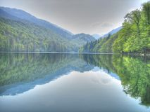 Lake. Biogradsko in Montenegro stock image