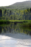Lake. In Bieszczady mountains,Poland Stock Photo