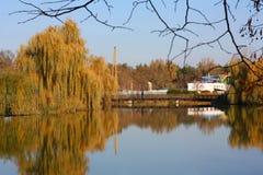 Lake. Lake, reflections of sky and trees royalty free stock photos