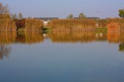 Lake. Lake, reflections of sky and trees royalty free stock image