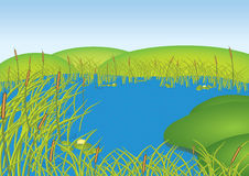 Lake. Illustration, a lake with reeds in windy weather Royalty Free Stock Photo