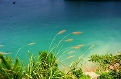 Lake Royalty Free Stock Photo