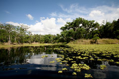 Free Lake Royalty Free Stock Photos - 4742228