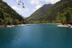 Lake. In jiuzhaigou valley secnic Royalty Free Stock Photos