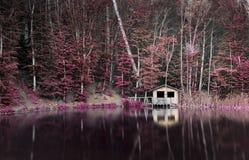 Free Lake Royalty Free Stock Photo - 54190055