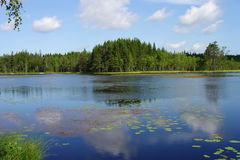 Lake. Perfect lake in one of Scandinavian countries Royalty Free Stock Images