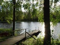 lake. Obraz Royalty Free
