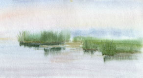 Lake. A calm lake with reeds by the bank. Watercolor Stock Images