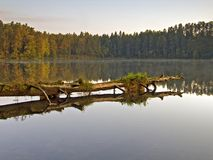 The lake. Earlier morning Royalty Free Stock Images