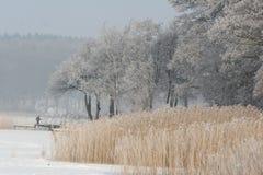 Lake. A lake in denmark in winter Stock Photo