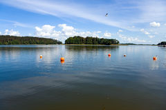 Lake. View at the wide and calm Masurian lake surface in the forest, flying bird and buoys Stock Photo