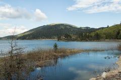 Lake Abant Royalty Free Stock Image