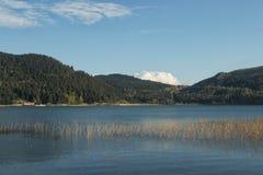Lake Abant royalty free stock photo