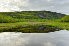 Lake in Acadia National Park. Reflecting lake in Acadia National Park, Maine Royalty Free Stock Images