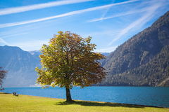 Lake Achensee in Austria. Autumn at the lake Achensee in Austria Stock Images