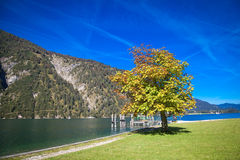 Lake Achensee in Austria. Autumn at the lake Achensee in Austria Royalty Free Stock Photography