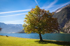 Lake Achensee in Austria. Autumn at the lake Achensee in Austria Royalty Free Stock Images