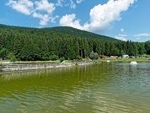 Lake at acrobatic park. Roana, Italy - Aug 2018: lake at acrobatic park Royalty Free Stock Images
