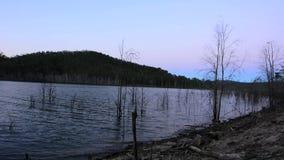 Lake Advancetown in Gold Coast Queensland Australia stock video
