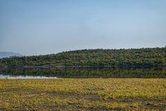 Lake against an arid landscape. Lake Magadi against an arid landscape, Magadi, Rift Valley, Kenya  safari travel scenic beautiful nature natural dry desert royalty free stock photos