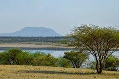 Lake against an arid landscape. Lake Magadi against an arid landscape, Magadi, Rift Valley, Kenya  safari travel scenic beautiful nature natural dry desert stock photos
