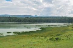 Lake against a mountain background, Lake Elementaita stock photography