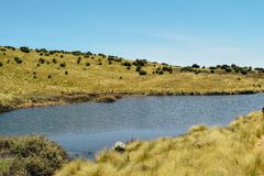 Lake against a mountain background, Mount Kenya stock photo