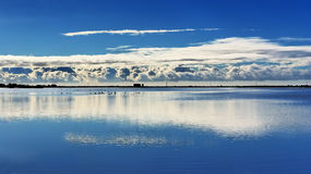 Lake at Aigues-Mortes Camargue (Fr) Stock Image
