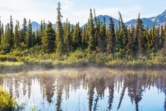 Lake on Alaska Royalty Free Stock Photo