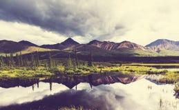 Lake on Alaska Royalty Free Stock Images