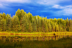 Lake on Alaska. Serenity lake in tundra in Alaska royalty free stock photo