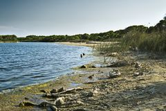 Lake Albufera Royalty Free Stock Photo