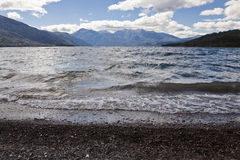 Lake at the Alerces national park Stock Photo