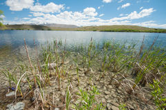 Lake Alexandrina Stock Photos