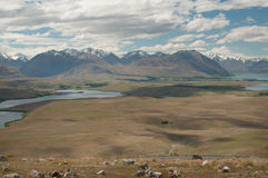 Lake Alexandrina and Tekapo Stock Photography