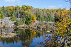 Lake in Algonquin Park Stock Image