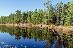 Lake in Algonquin Park Royalty Free Stock Photo