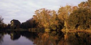 Lake Alice Royalty Free Stock Image