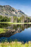 Lake along Chief Joseph Scenic Byway. Reflections in a lake along Chief Joseph Scenic Byway in Wyoming Royalty Free Stock Photos