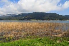 Lake along Mountain Royalty Free Stock Images
