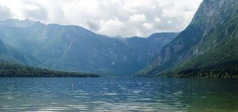 Lake in the Alps. Lake Bohinj with Alps in behind Royalty Free Stock Images