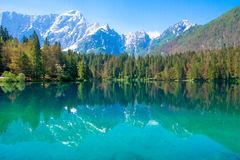 Lake in the Alps, Italy Royalty Free Stock Photo