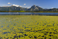 Lake and alps mountains in Bavaria Stock Photos