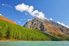 Lake in Altai Mountains Royalty Free Stock Image